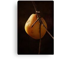 One Last Pear Canvas Print