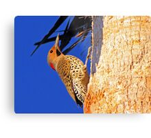 Who visited me today? Metal Print