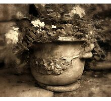 Urn Photographic Print
