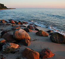 Morning stones on a Baltic Sea beach in summer 2007 by jchanders