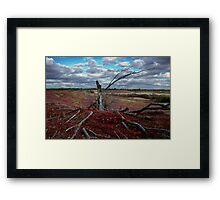 Red Grass Hill Framed Print