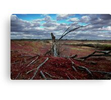 Red Grass Hill Canvas Print