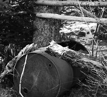 The Barrell  by Cyril S. Shugarue Jr.