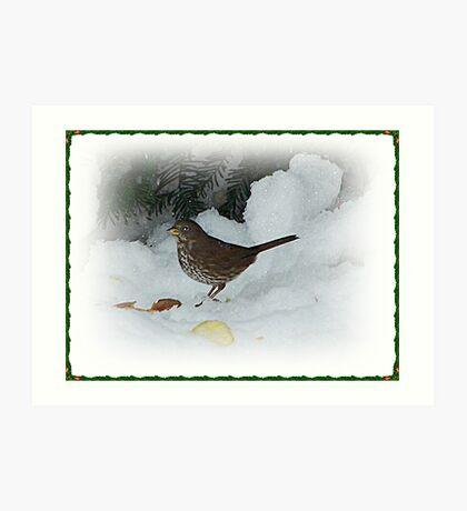 Bird Eating In The Snow Art Print