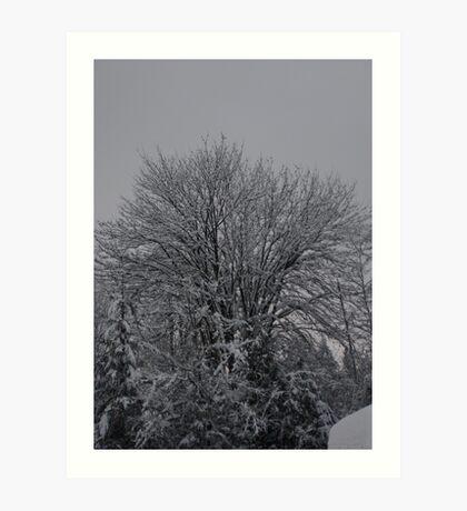 White Christmas 1 Art Print