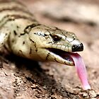 """And I'm called a """"pink-tongued"""" skink because????  by Normf"""