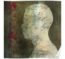 Acupuncture Model Poster