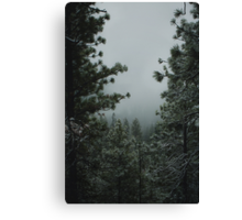 Backwoods Winter Canvas Print