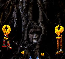 ayunthaya head by paul levy