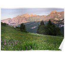 Last sunrays on Bargy mountain Poster