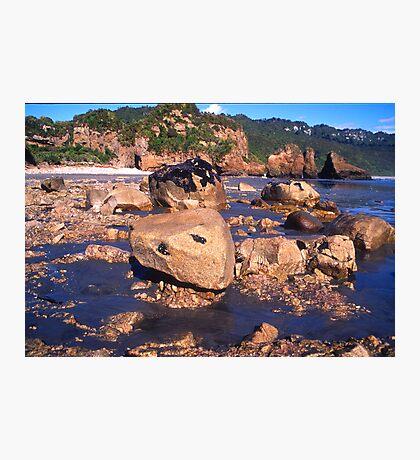 fox river. westcoast, aotearoa Photographic Print