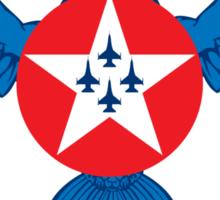 Air Force Thunderbirds Sticker