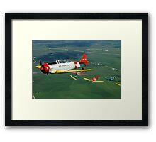 Formation Flight Framed Print