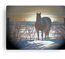 Pinto Rockies II Canvas Print