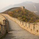 Great Wall by David Reid