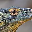 Komodo Dragon by neil harrison