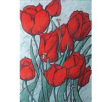 'Tulips' Photographic Print