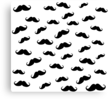 I Moustache You a Question Canvas Print