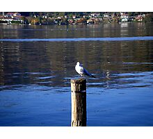Having a rest on the Orta Lake Photographic Print