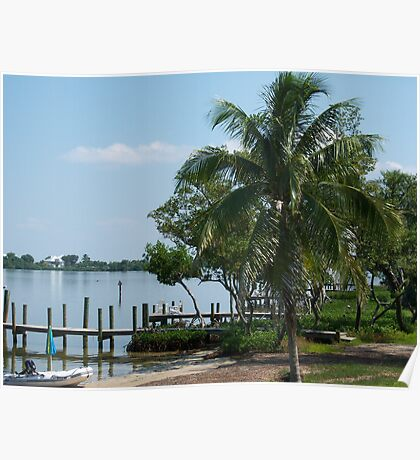 Palm at Cabbage Key Poster