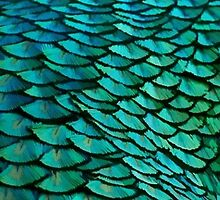 Green Feathers (2) by minimalistme