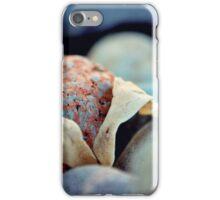 Caught Between a Rock ... iPhone Case/Skin