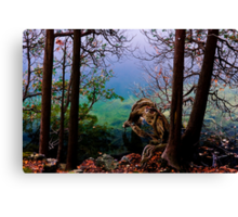 Life and Decay on a Woodland Pond Canvas Print