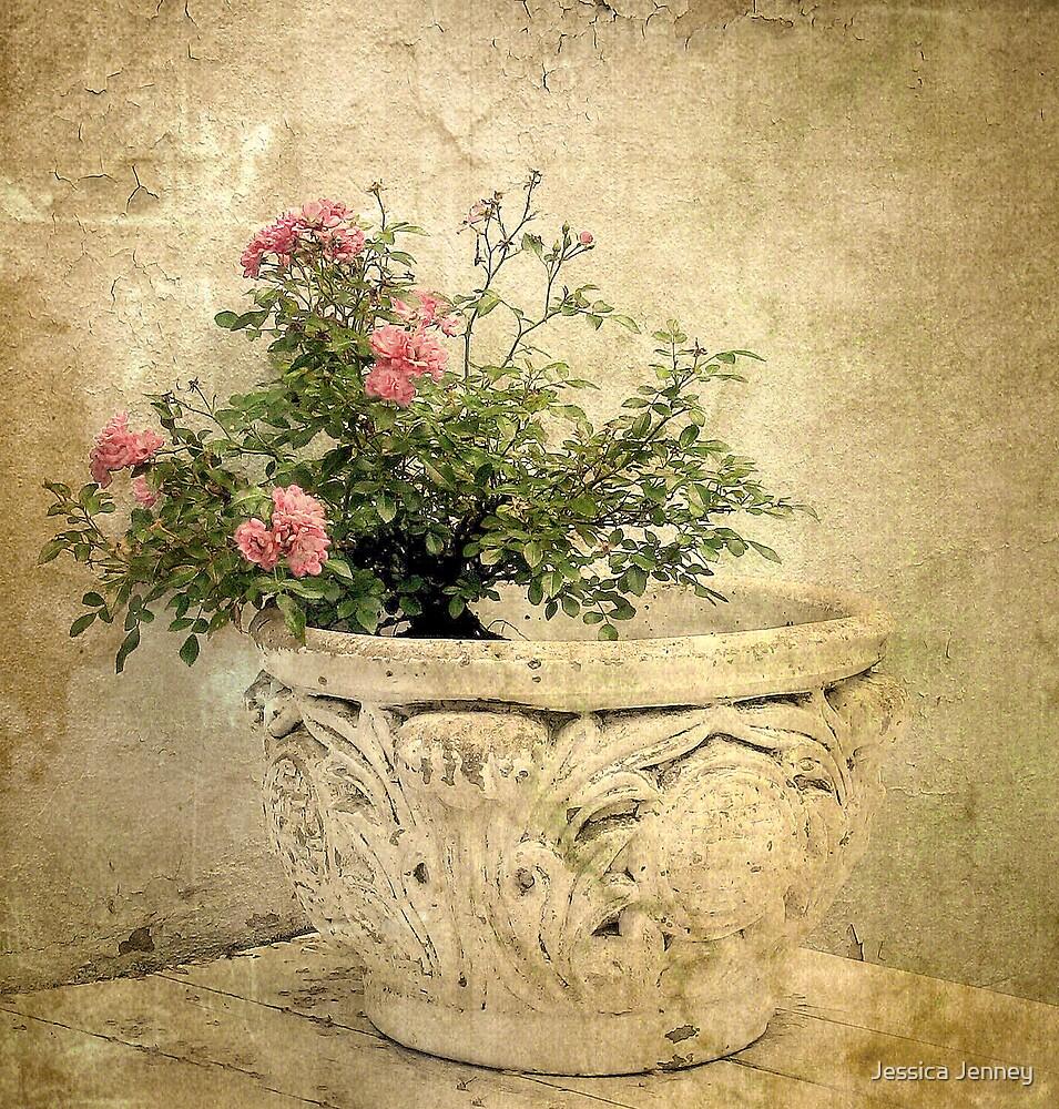 Vintage Rose by Jessica Jenney