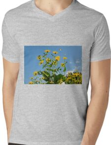 Spring Is In The Air #2, Oxford, England Mens V-Neck T-Shirt