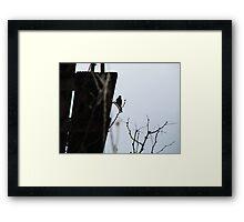 Silhouette Bird Framed Print