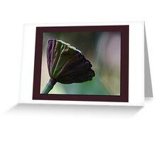 Lotus Pod Greeting Card