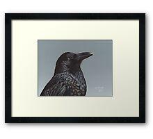 Study of a Raven Framed Print