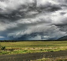 Mt Walsh Gustfront - Biggenden Qld by Julie Just