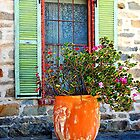 Green Shutters by patapping