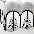 Snow Fence by Lynn Gedeon