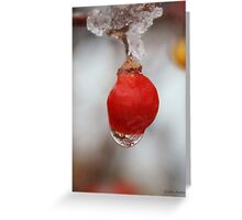 Melting Ice on a Red Berry Greeting Card