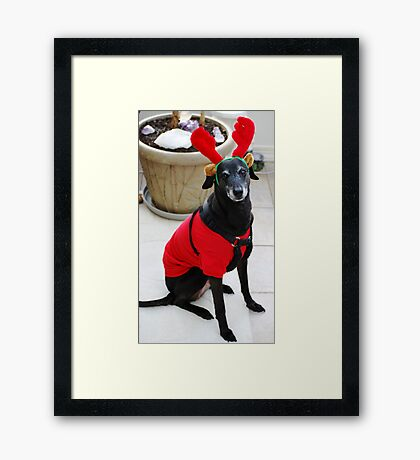 Scooby Deer.... Framed Print