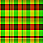 IT'S TARTAN ... by Colleen2012