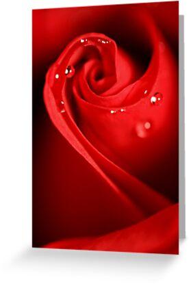Red Swirl by Sharon Johnstone
