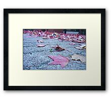 Leafy Layer Framed Print