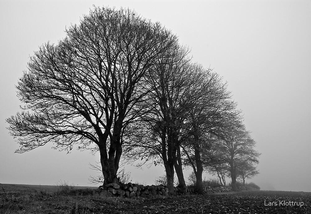 November by Lars Klottrup