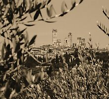 San Gimignano II by Nigel Fletcher-Jones