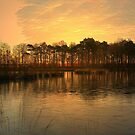 Evening by the Lake by ienemien
