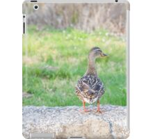 Female Mallard Duck iPad Case/Skin