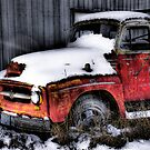 """Old Red""  Rotting away series.. by raberry"