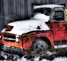 """""""Old Red""""  Rotting away series.. by raberry"""