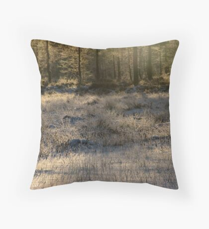 'Almost last light of the year III' Throw Pillow