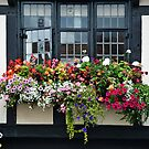Colorful flowers at Black and White facade by Arie Koene