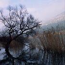 Lake V by Vivi Kalomiri