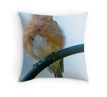 Happy Birthday from Fluffy Bluebird Throw Pillow